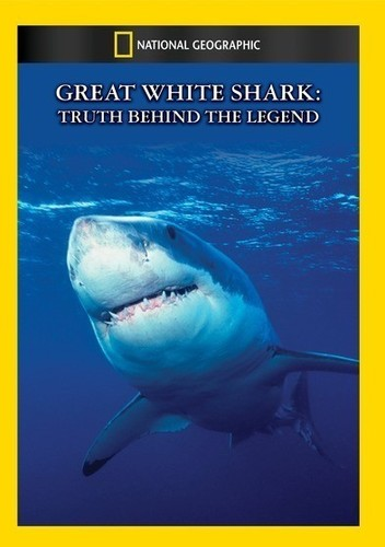 Great White Shark: Truth Behind the Legend