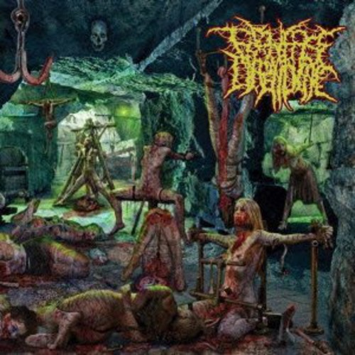 Patterns of Depravity [Import]