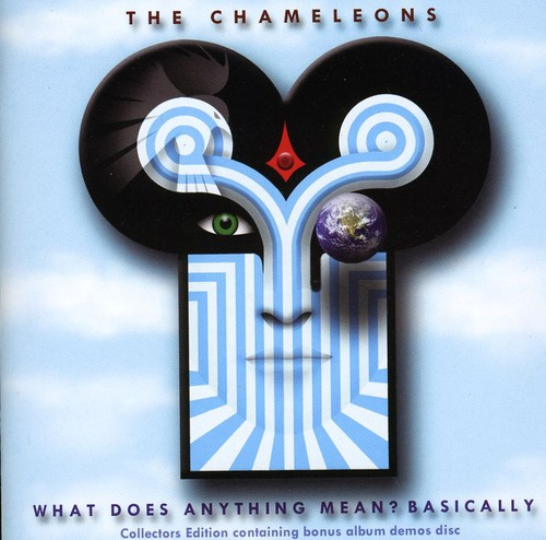 What Does Anything Mean - Basically [Import]