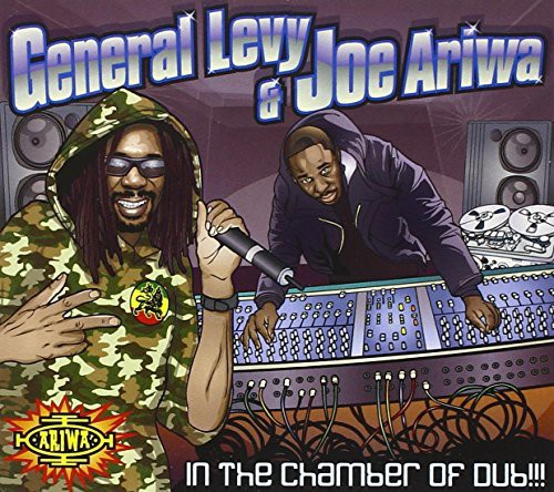 In the Chamber of Dub [Import]