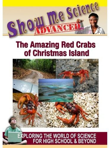 The Amazing Red Crabs Of Christmas Islands