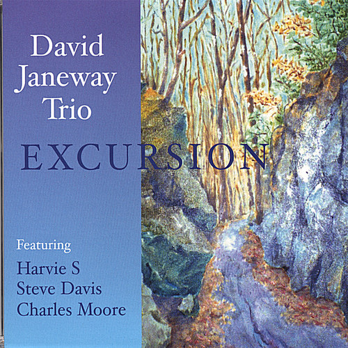 David Janeway Trio-Excursion