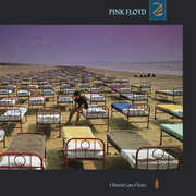 Momentary Lapse of Reason , Pink Floyd