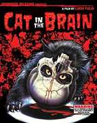 Cat In The Brain , Lucio Fulci