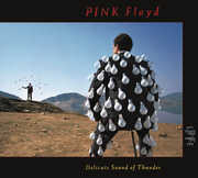 Delicate Sound Of Thunder (Live) , Pink Floyd