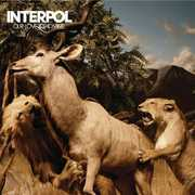 Our Love To Admire , Interpol