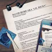 Professional Rapper [Explicit Content] , Lil Dicky