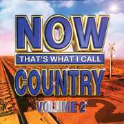 Now That's What I Call Country, Vol. 2 , Various Artists