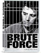 Brute Force (Criterion Collection) , Burt Lancaster