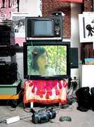 Miniscule Documentary [Import] , Bjork