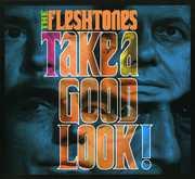 Take a Good Look , The Fleshtones