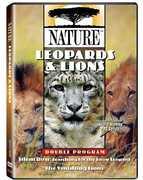 Nature: Leopards & Lions