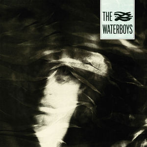 Waterboys , The Waterboys