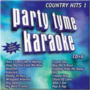 Party Tyme Karaoke: Country Hits, Vol. 19 , Various Artists