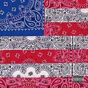 All-Amerikkkan Bada$$ , Joey Badass