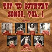 Top 40 Country 1 /  Various