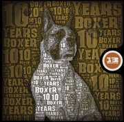 10 Years of Boxer /  Various