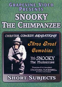 Snooky the Chimp