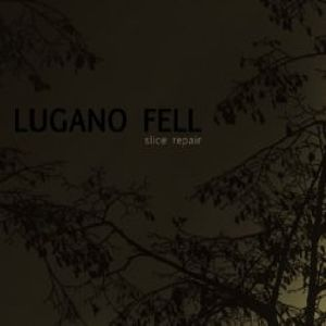 Fell, Lugano : Slice Repair