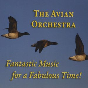 Avian Orchestra: Fantastic Music for a Fabulous Time