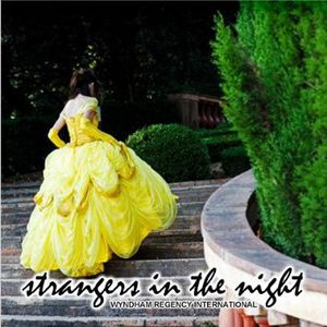 Strangers in the Night /  Various
