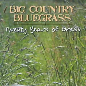 Twenty Years of Grass