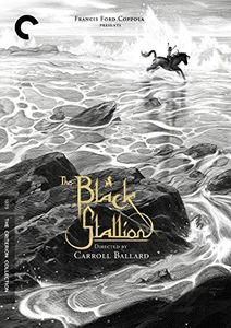 Black Stallion (Criterion Collection)