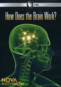 Nova Science Now: How Does the Brain Work