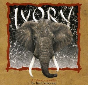 Ivory a Celebration of Wildlife