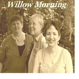 Willow Morning