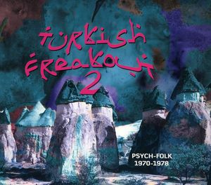 Turkish Freakout 2 /  Various
