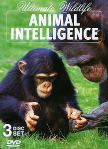 Animal Intelligence