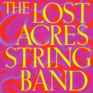 Lost Acres String Band