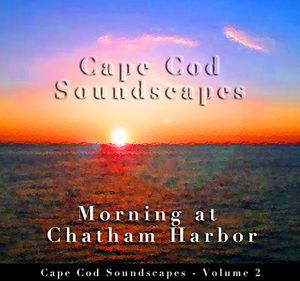 Cape Cod Soundscapes: Morning at Chatham Ha 2
