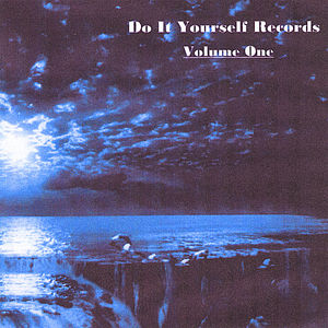 Do It Yourself Records 1 /  Various