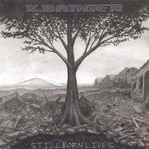 Stillborn Lives