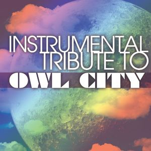 Instrumental Tribute to Owl City /  Various