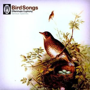 Bird Songs /  Various