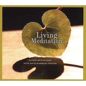 Music for Deep Meditation : Living Meditation: Guided Meditations with David H