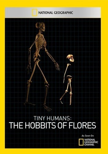Tiny Humans: The Hobbits of Flores