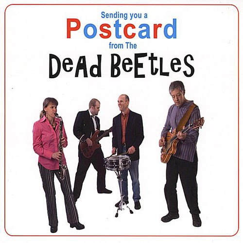 Sending You a Postcard from the Dead Beetles