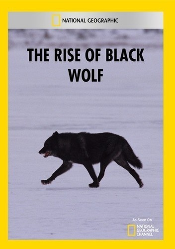 Rise of Black Wolf