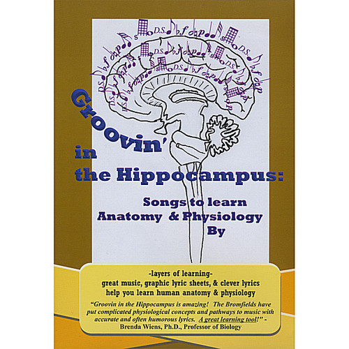 Groovin in Hippocampus