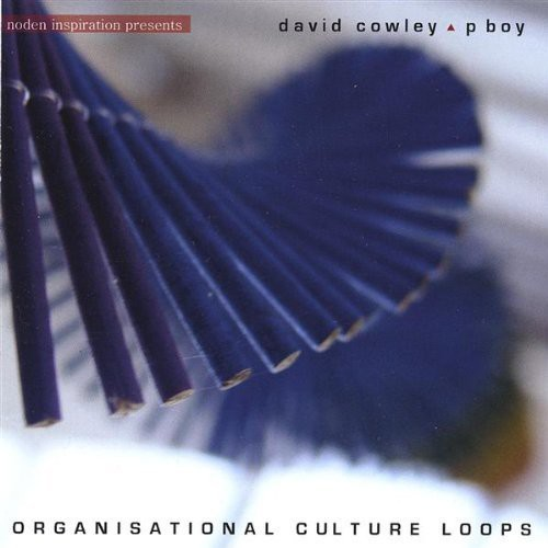 Organisational Culture Loops