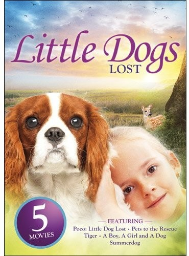 Little Dogs Lost