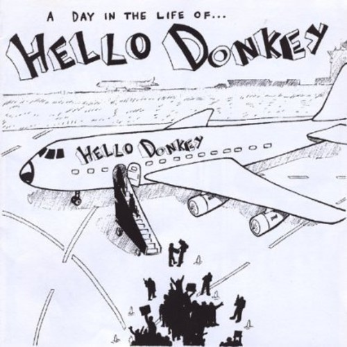 Day in the Life of Hello Donkey