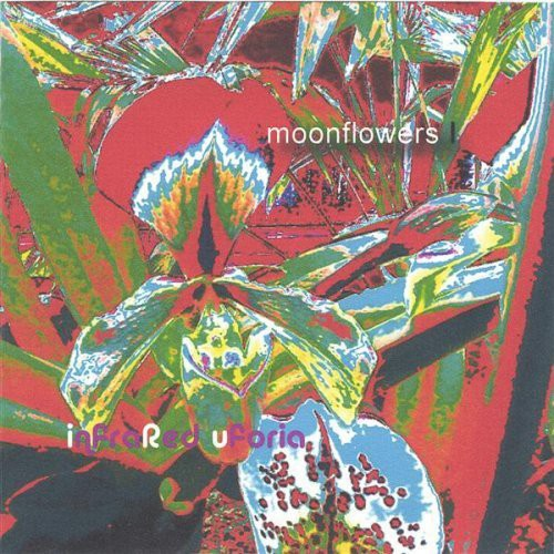 Moonflowers 1