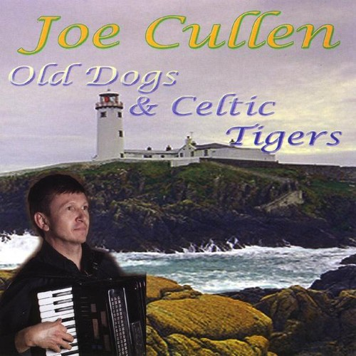Old Dogs & Celtic Tigers