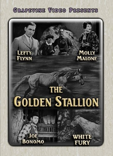 Golden Stallion (1927)