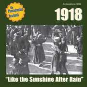 Like the Sunshine After Rain /  Various